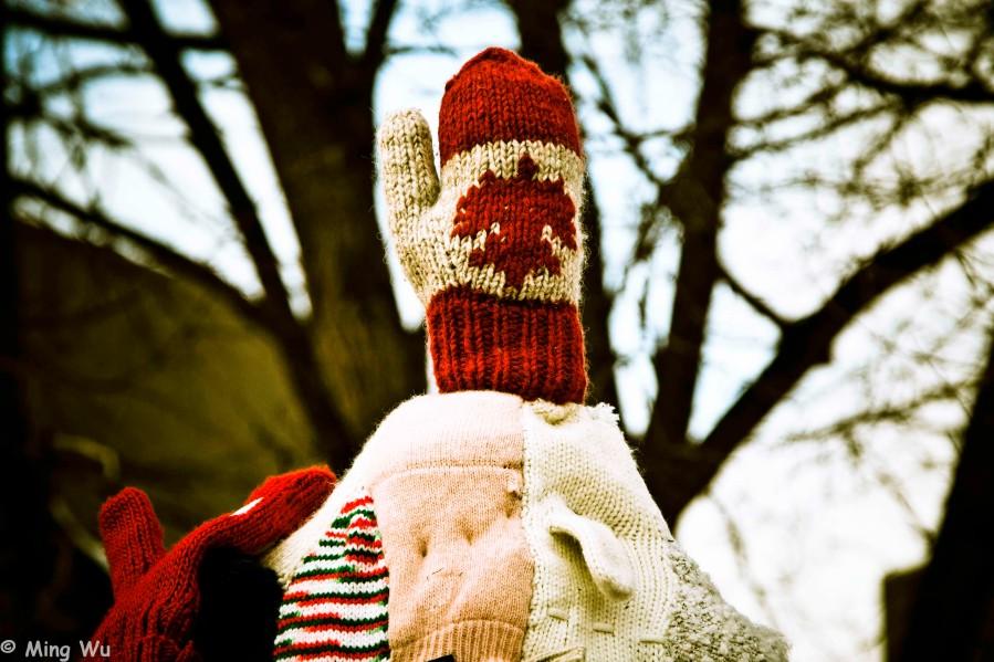 WinterludeConfedPark2012-4