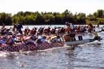 OttawaDragonBoatFestival-61