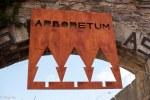 Arboretum-Randoms-1